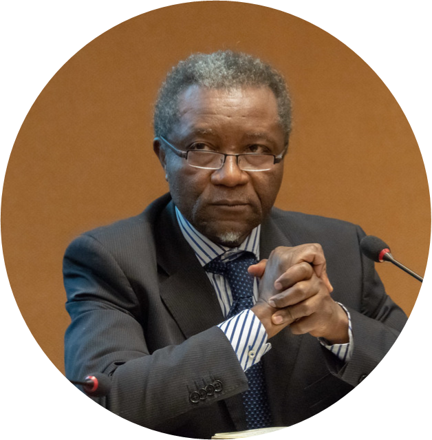 François EKOKO Regional Coordinator for Africa 1